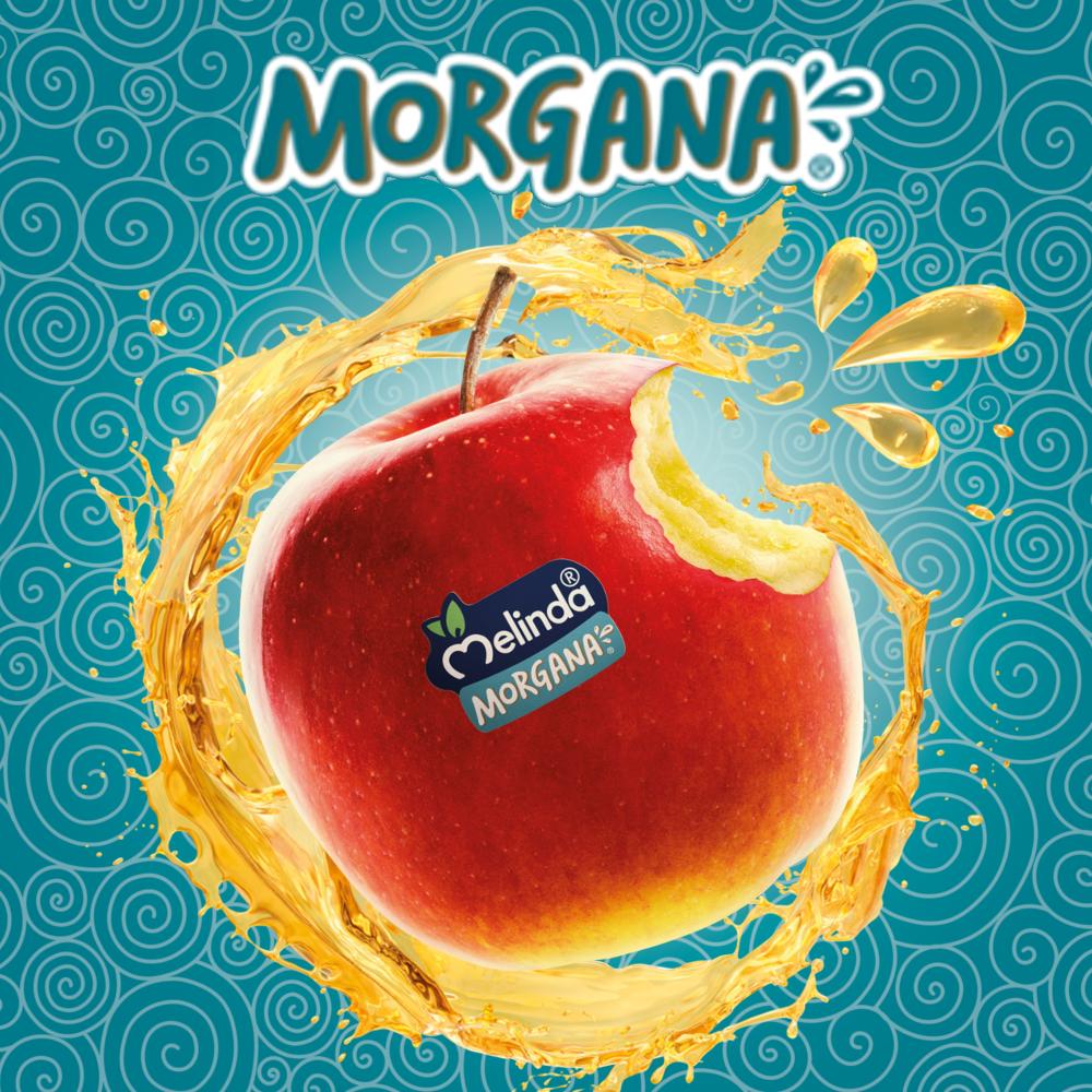 Morgana Melinda